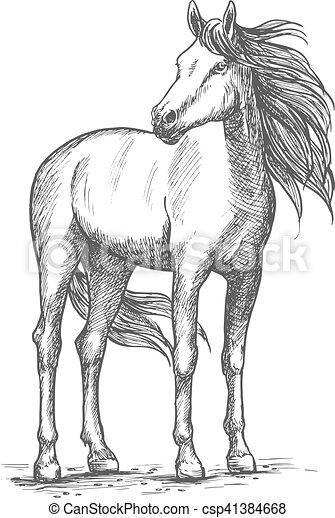 dessin cheval debout