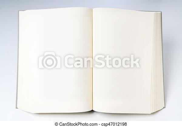 Debout Livre Vide Blanc Ouvert Pages