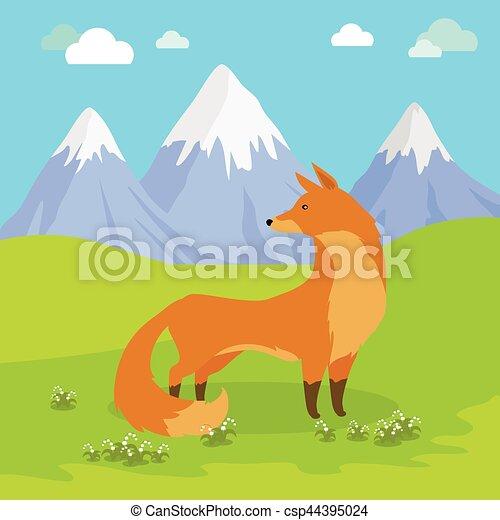 debout, montagnes., renard, pré, rouges - csp44395024