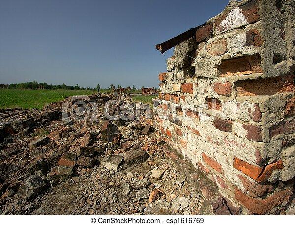 Debris - csp1616769