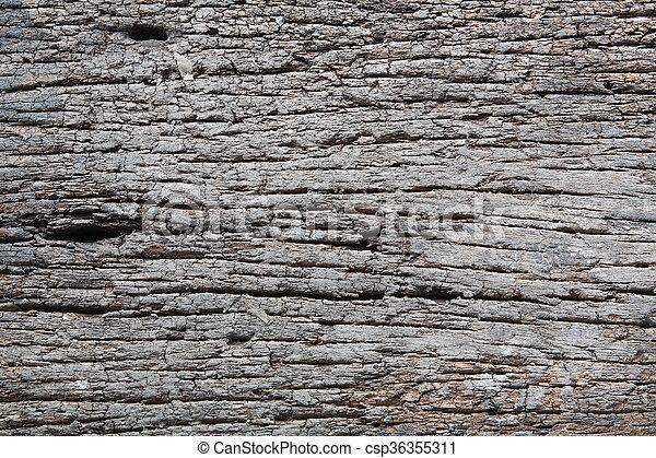 Decay wood - csp36355311