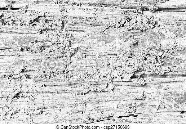 Decay wood texture Soft tone White color - csp27150693