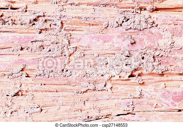 Decay wood texture - csp27148553