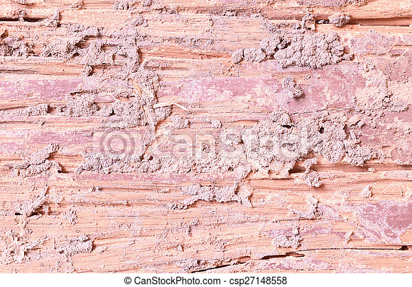 Decay wood texture - csp27148558
