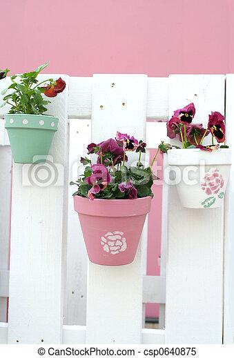 decoração, pansy\\\'s - csp0640875