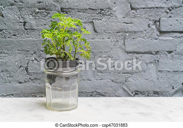 La decoración de la vasija con la habitación vacía - csp47031883