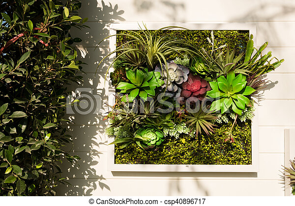 Decorated wall vertical garden, background. Decorated wall vertical ...