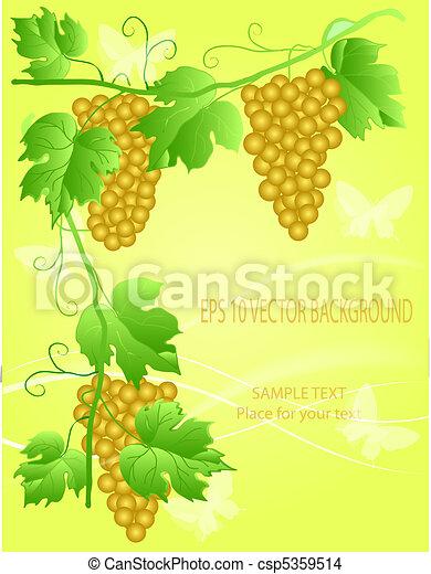 decorative grape illustration - csp5359514