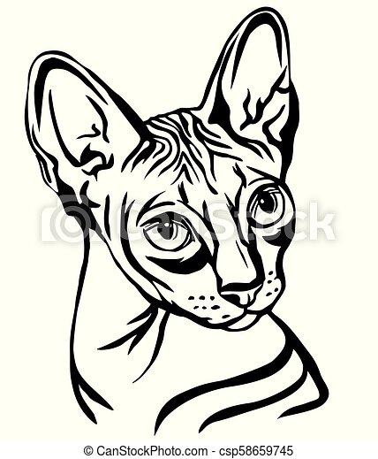 Decorative Portrait Of Sphynx Cat Vector Illustration