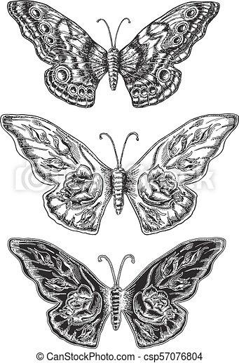Decorative Sketch Butterflies Vector Illustration Decorative