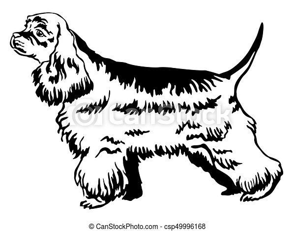 94b2c719ec43 Decorative standing portrait of American Cocker Spaniel vector illustration