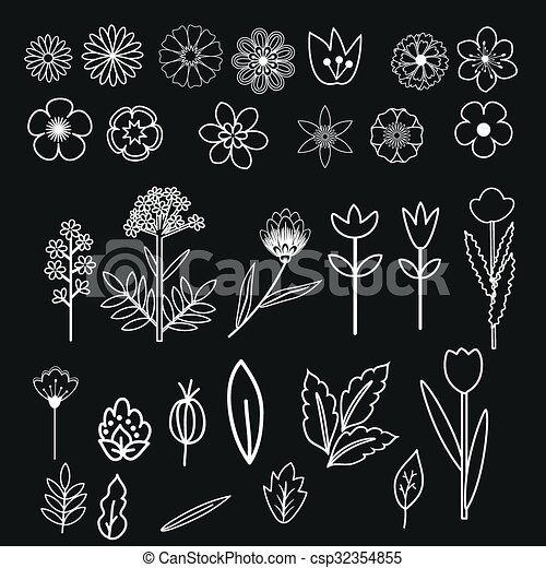 decorativo, flores, conjunto - csp32354855