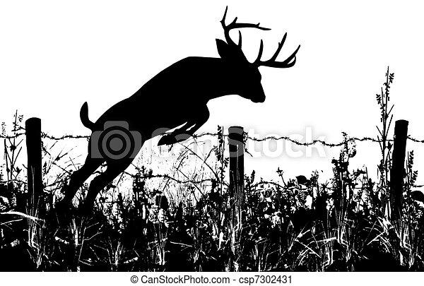 Buck clipart deer head, Buck deer head Transparent FREE for download on  WebStockReview 2020