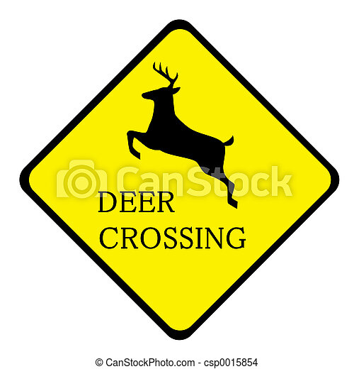 Deer Crossing - csp0015854