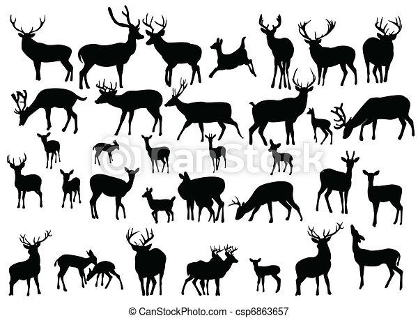 deer - csp6863657