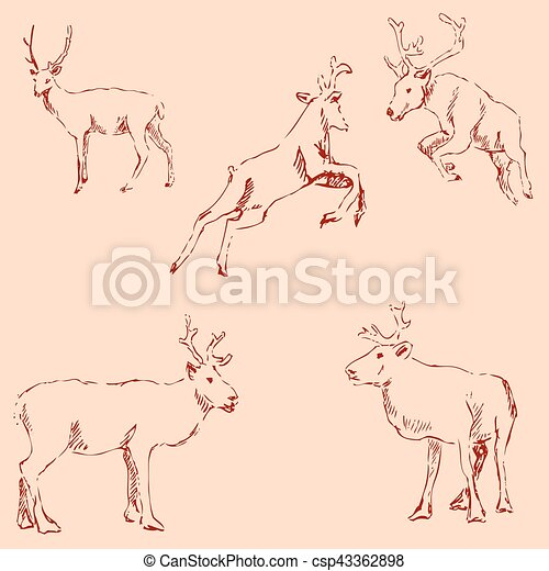 Deer sketch. Pencil drawing by hand. Vintage colors. Vector - csp43362898
