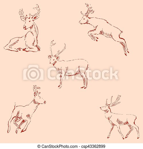 Deer sketch. Pencil drawing by hand. Vintage colors. Vector - csp43362899