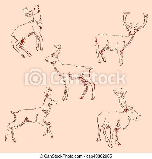 Deer sketch. Pencil drawing by hand. Vintage colors. Vector - csp43362905