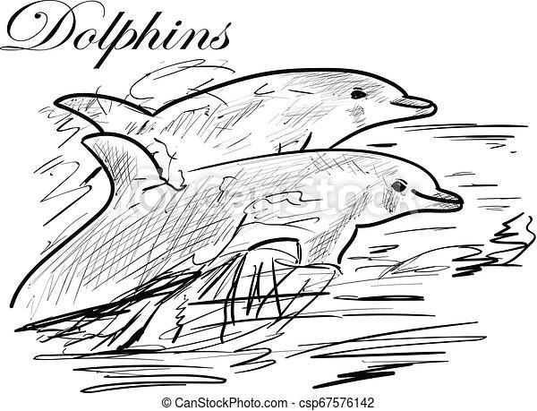 Delfín - csp67576142