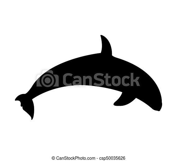 Delfín - csp50035626