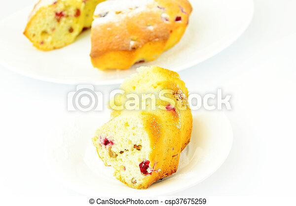 Delicious Cake with Raisins and Cranberries - csp37675259