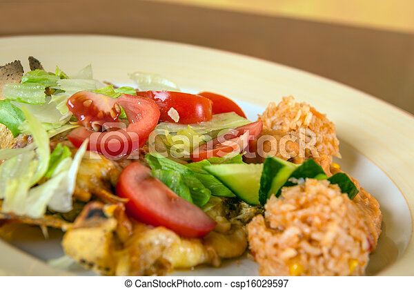 Delicious mexican food on a plate - csp16029597