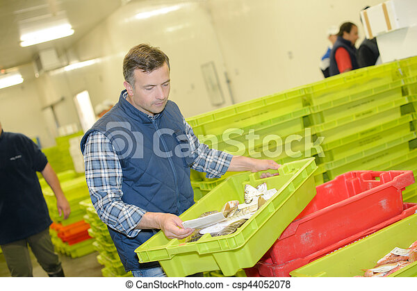 delivery of fresh catch - csp44052078