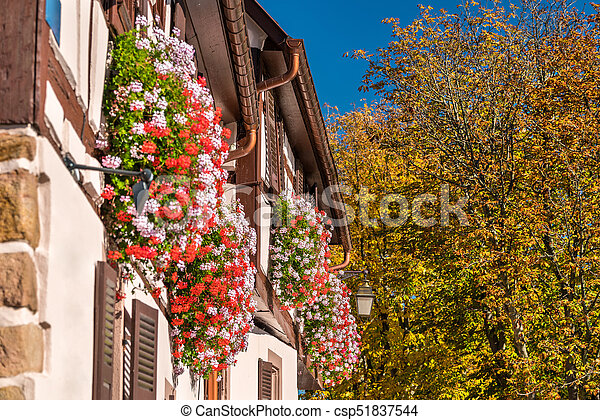 demi-timbered, maison, saint-hippolyte, -, france, traditionnel, village, façade, haut-rhin, fleurs - csp51837544
