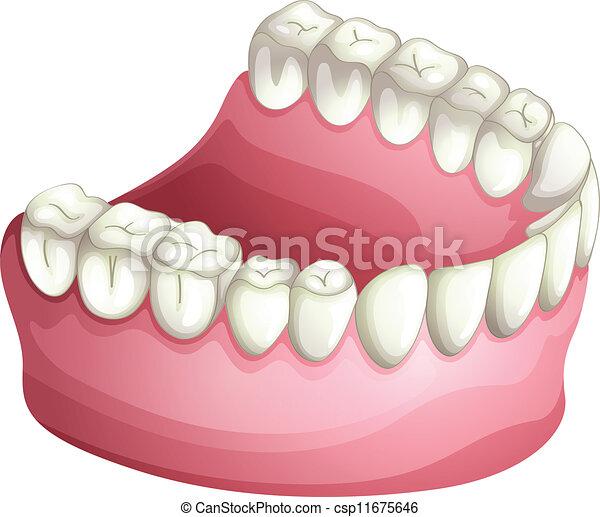 Dentura - csp11675646