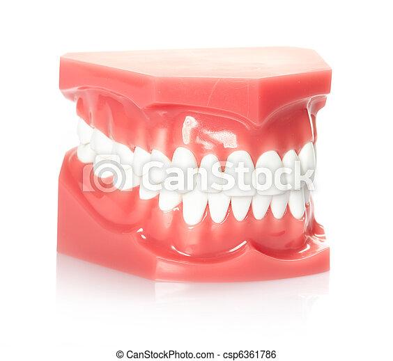 dents - csp6361786