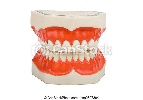 dentures, dental prosthesis - csp0597804