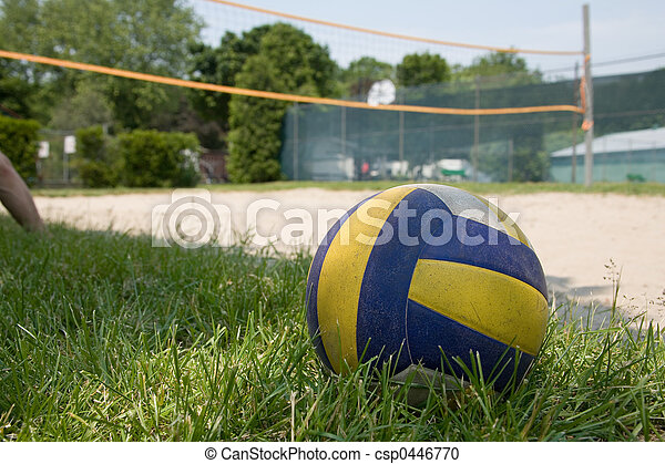 deporte, pasto o césped, voleibol - csp0446770