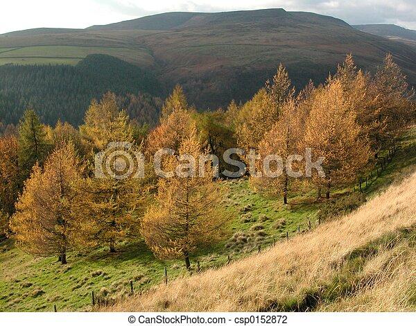 derbyshire, krajobraz - csp0152872
