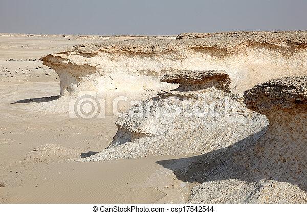 Desert landscape in Qatar, Middle East - csp17542544