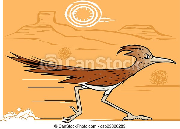 Desert Roadrunner - csp23820283