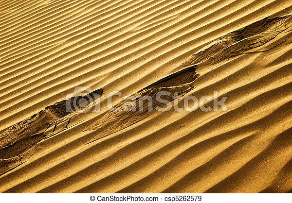 Desert - csp5262579