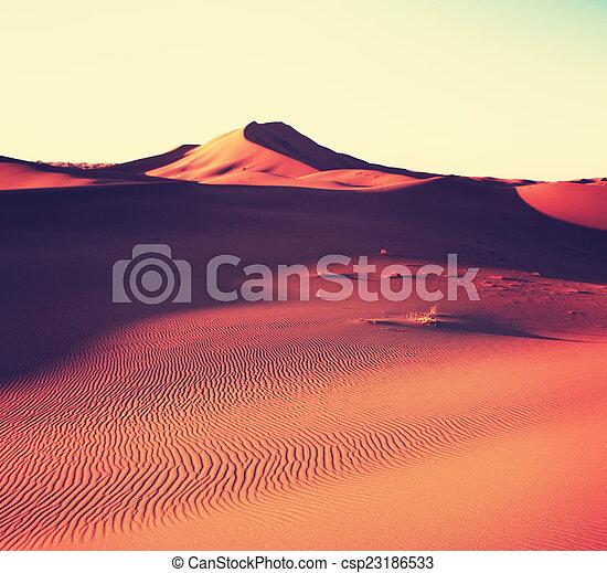 Desert - csp23186533