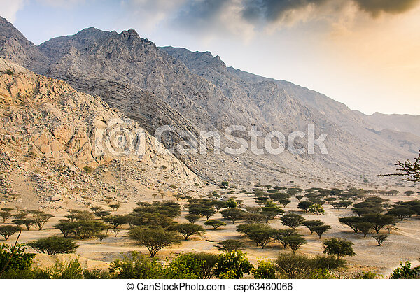 Desert sunset near Ras al Khaimah in the UAE - csp63480066