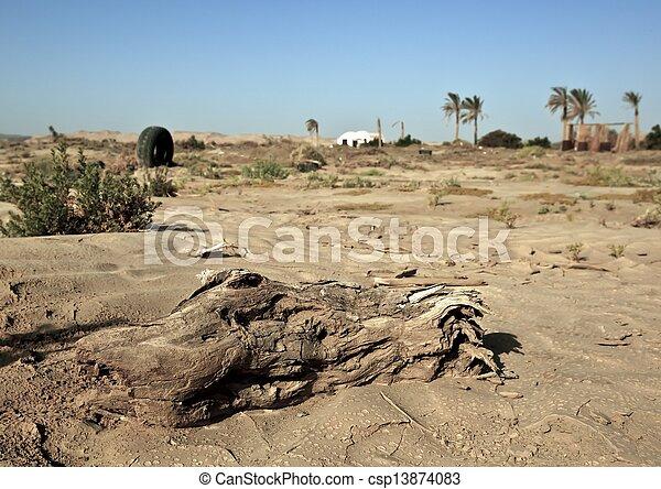 deserto - csp13874083