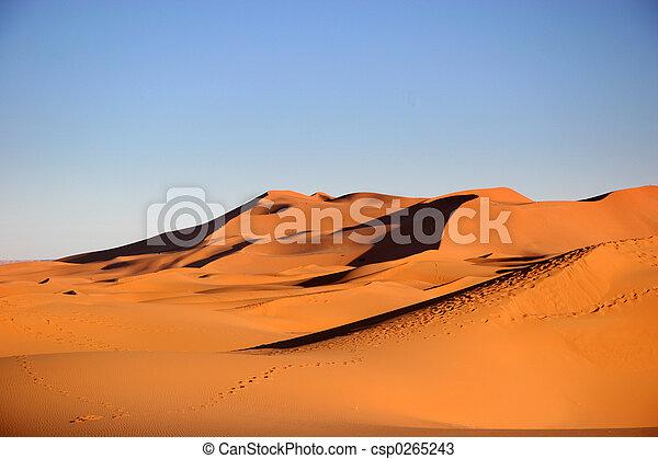 Desierto - csp0265243