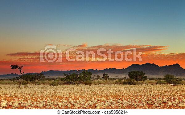 Desierto Kalahari - csp5358214
