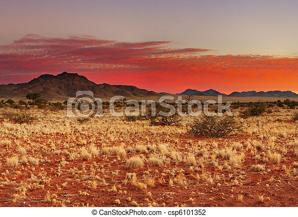 El desierto de Kalahari - csp6101352