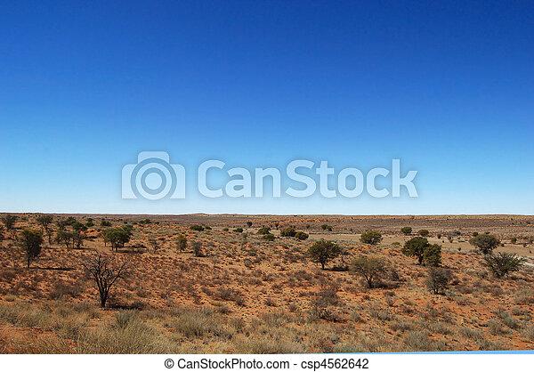 Un paisaje del desierto de Kalahari - csp4562642