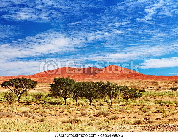 desierto Namib, sossufley, namibia - csp5499696