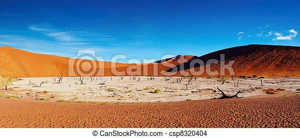 desierto Namib, sossusvlei, namibia - csp8320404