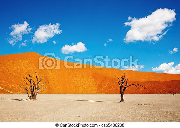 desierto Namib, sossusvlei, namibia - csp5406208