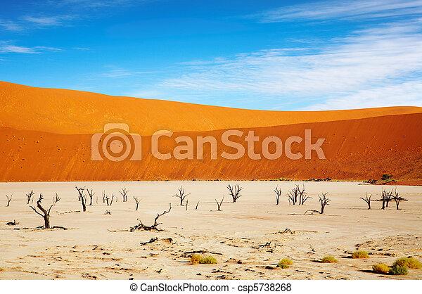 El desierto de Namib - csp5738268