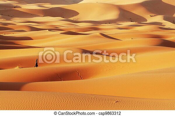 El desierto del Sahara - csp9863312