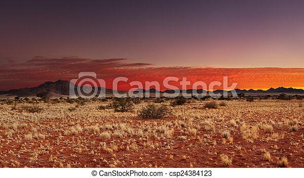 Desierto Kalahari, Namibia - csp24384123