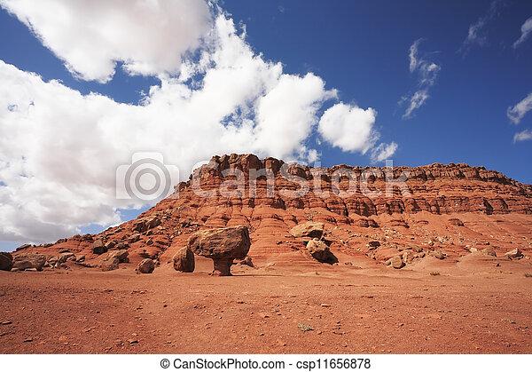 Magnífico desierto americano - csp11656878
